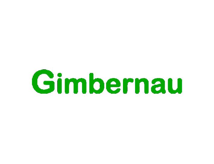 LOGO.GIMBERNAU